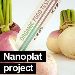Nanoplat project