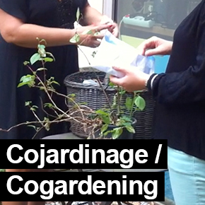 Cojardinage/cogardening