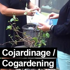 Cojardinage/cogardening